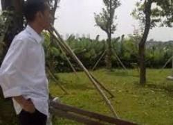 Parpol Pendukung Bisa Berbalik Melawan Jokowi-JK